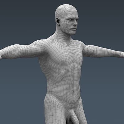3711 Human Male Body and Respiratory System Textured Anatomy