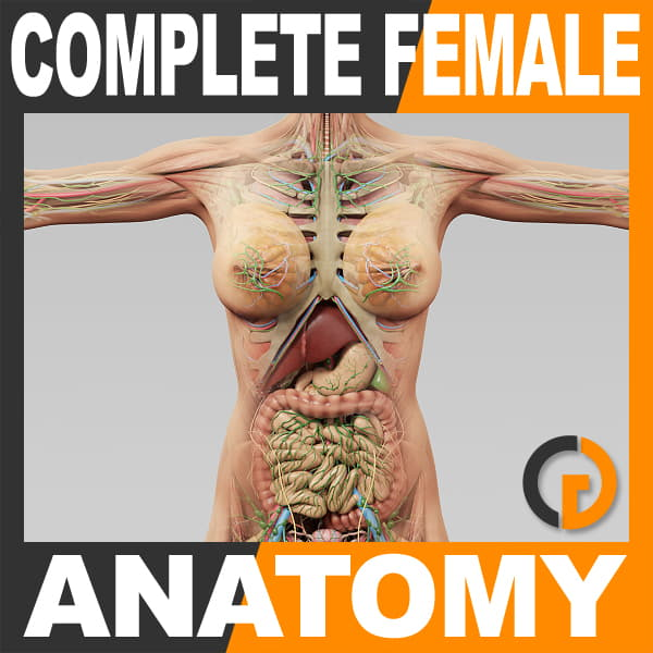 CompleteFemale th001